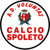 voluntas-spoleto